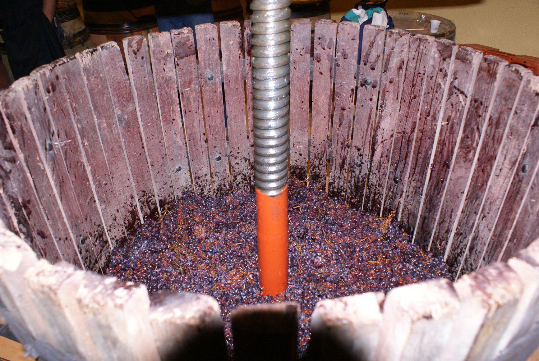 Fête du vin bourru - La Cabotte © La Cabotte