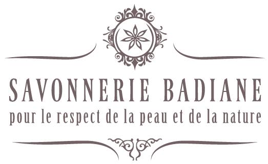 badiane logo gris pt - Savonnerie Badiane Clomot